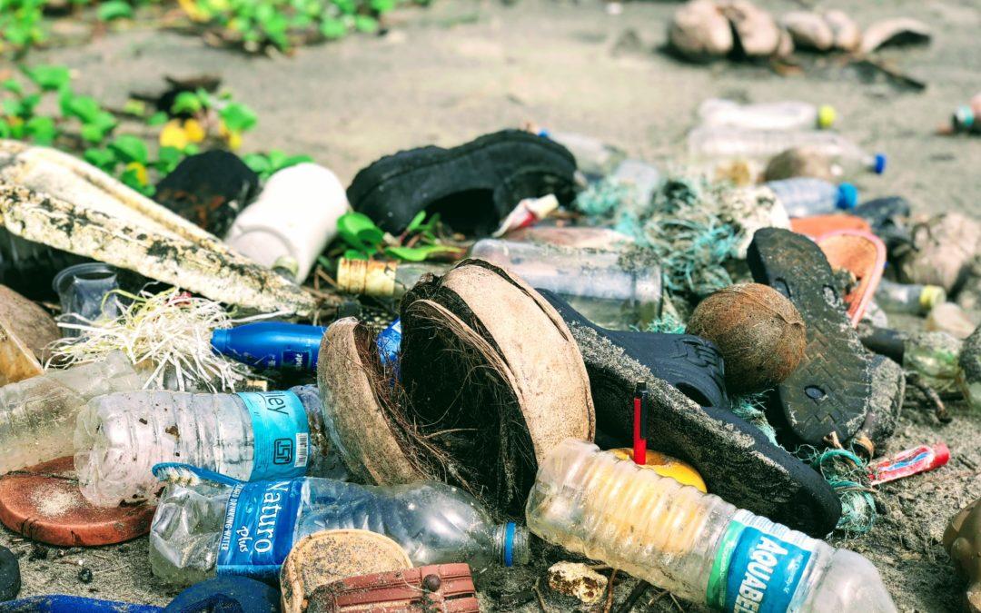 Crise sanitaire et loi anti-gaspillage