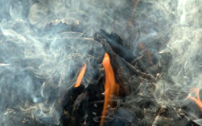 L'incinération des déchets de Toulouse Métropole en 2019